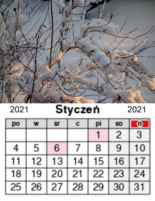 Kalendarz styczeń 2021