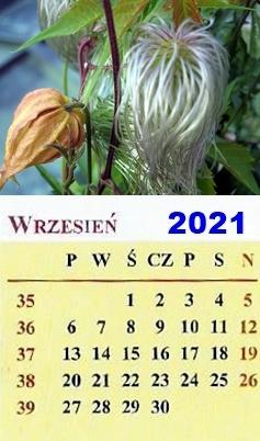 wrzesień 2021